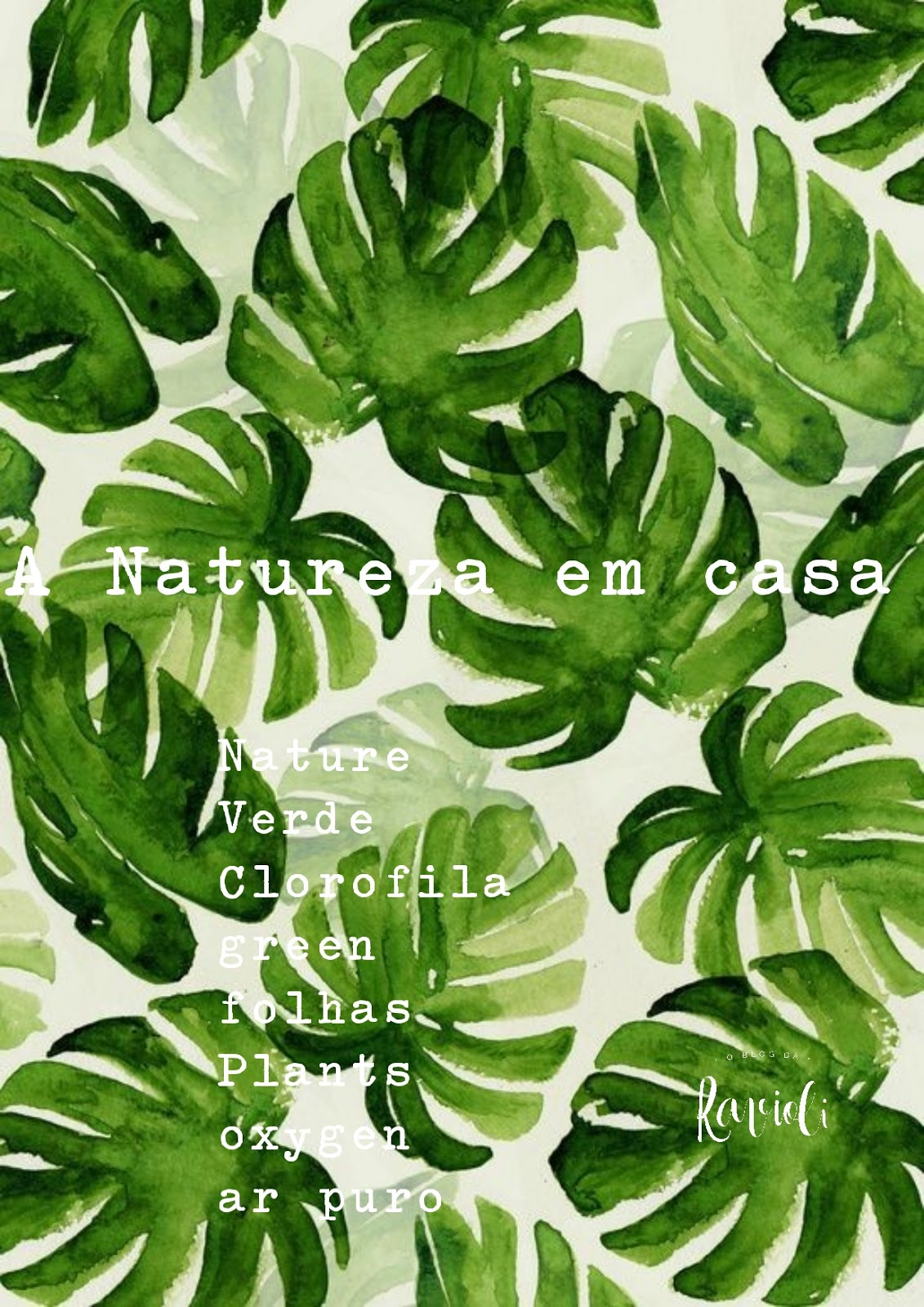 A Ravioli: A natureza em Casa