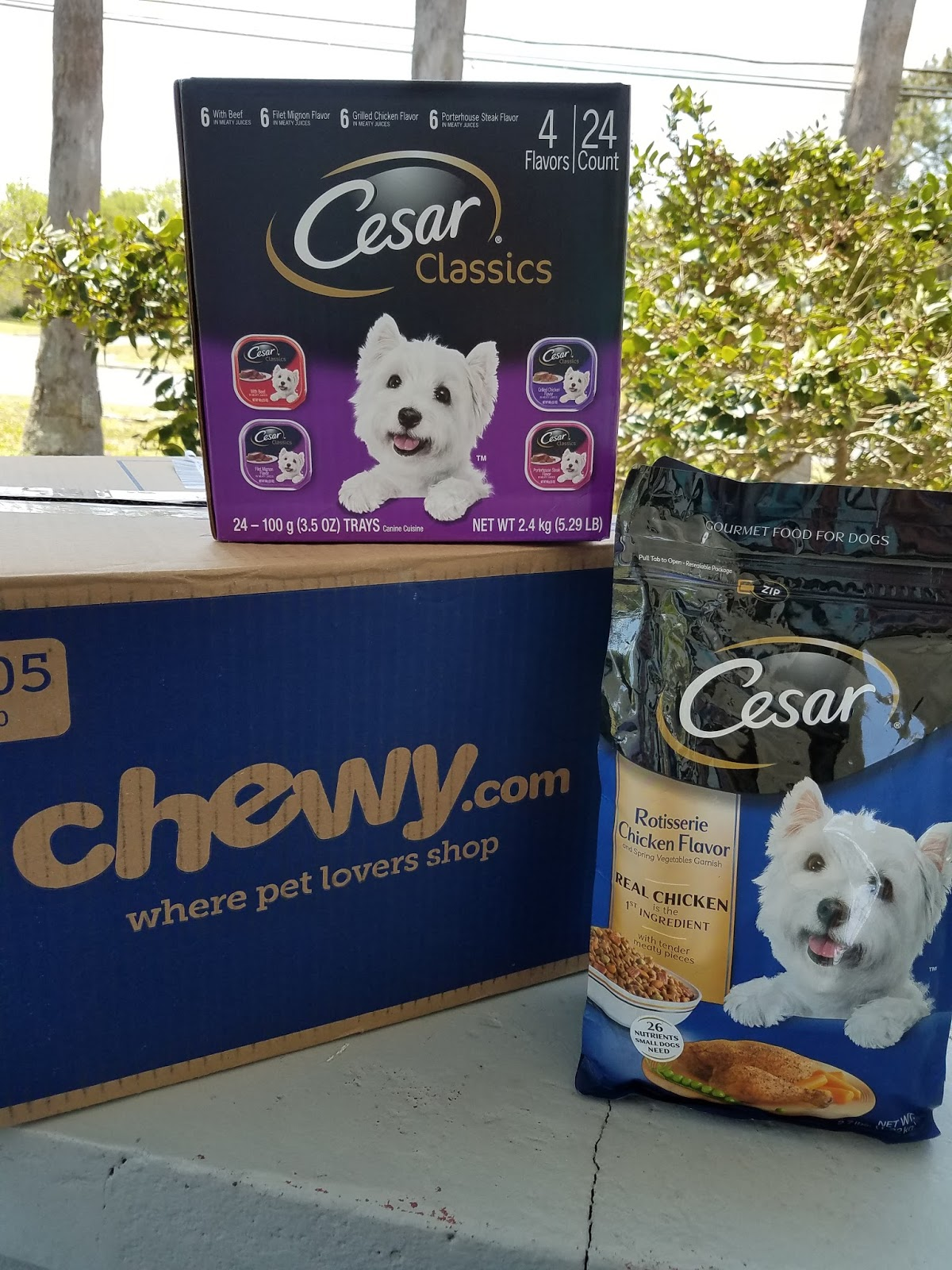 The Abcd Diaries Chewycom April Pick Cesar Dry Dog Food And