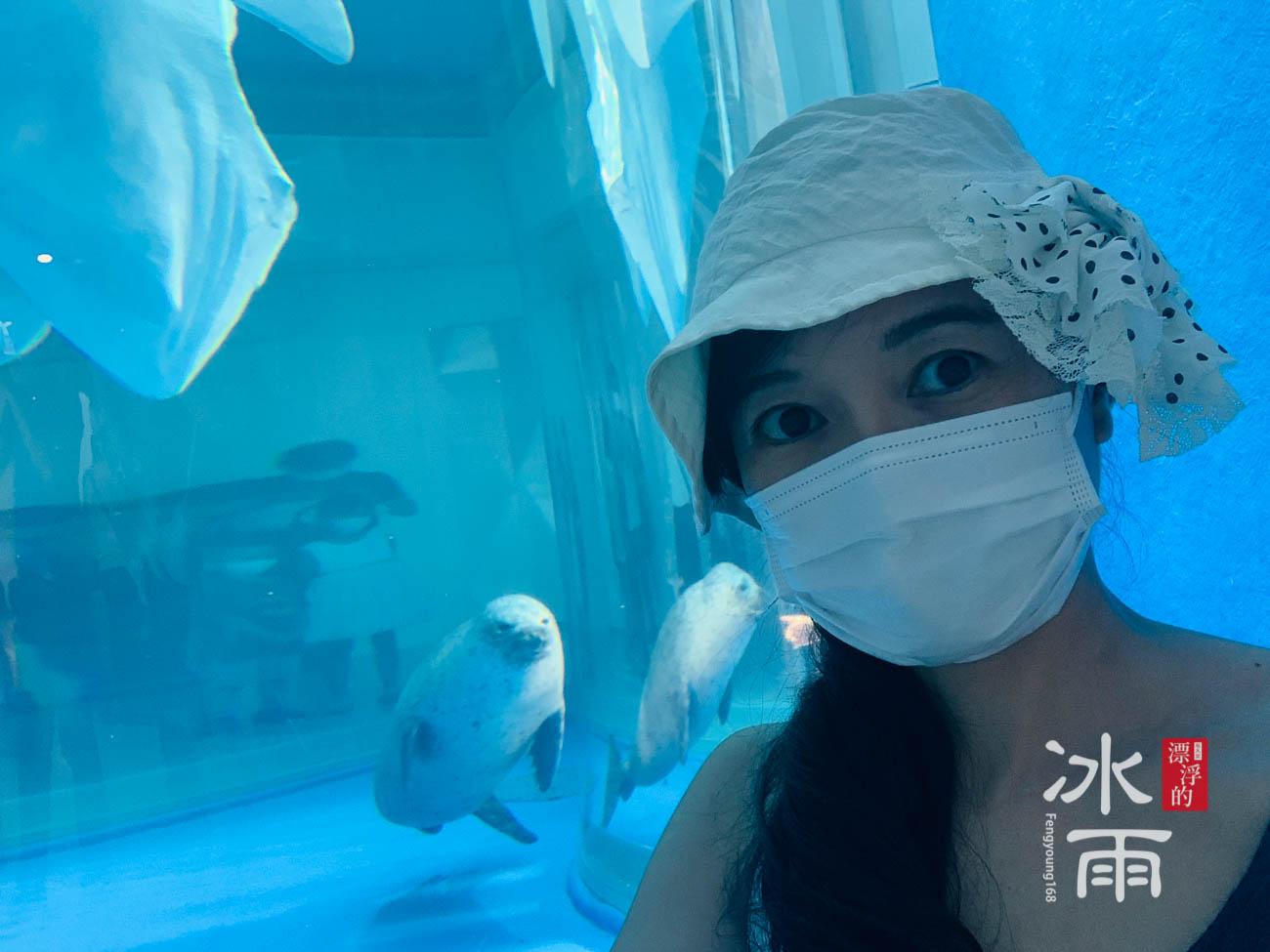 Xpark水族館|寒帶行凍