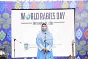 Wagub Tekankan Edukasi Pencegahan Rabies