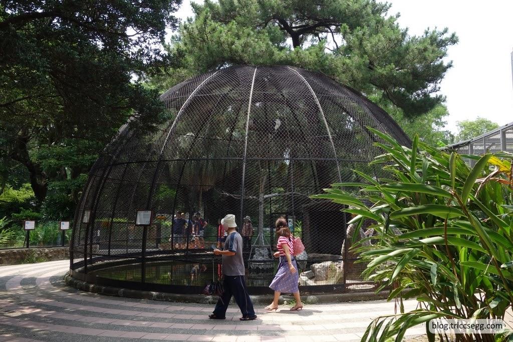 新竹市立動物園(49).JPG