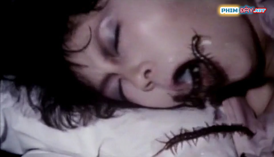 Bùa Con Rết - Centipede Horror (1982)