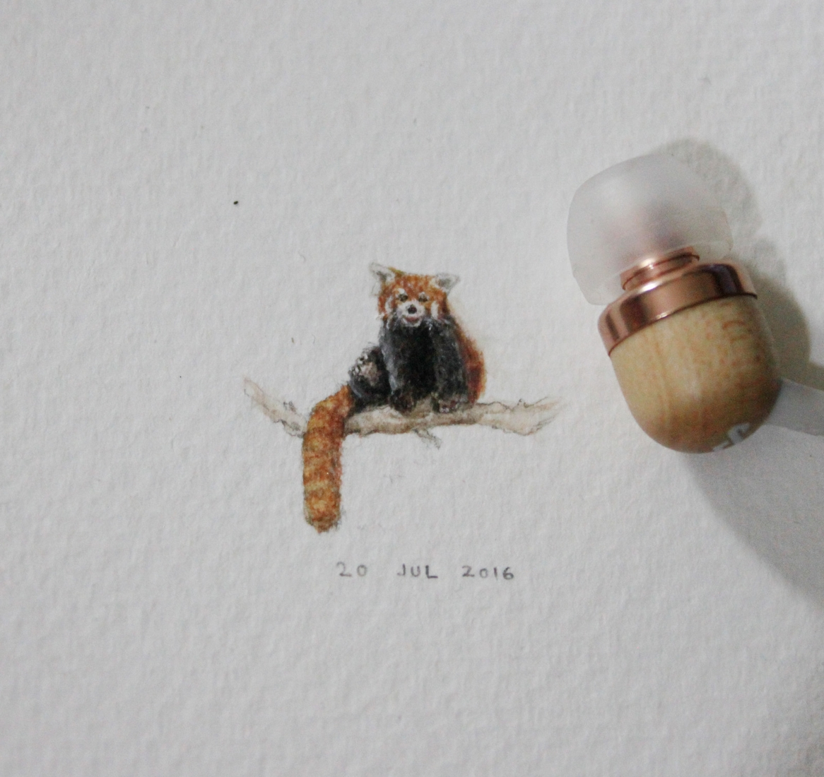 19-Red-Panda-Guillermo-Méndez-Mr-Luigi-Miniature-Drawings-and-Watercolor-Paintings-www-designstack-co