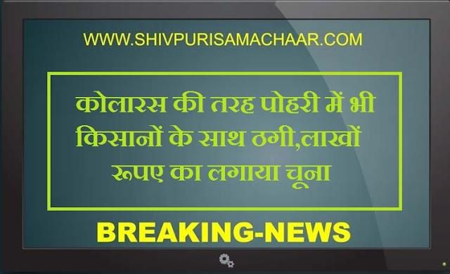 कोलारस की तरह पोहरी में भी किसानों के साथ ठगी, लाखों रूपए का लगाया चूना / Shivpuri News