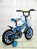 12 Inch Evergreen EG1251 Maximus Kids Bike