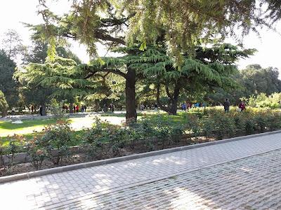 китайцы занимаются спортом в Храме Неба