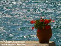 http://panagiotis-venetis.blogspot.gr/2016/05/blog-post_2.html