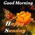 Top 10 Good Morning Happy Sunday  Wishes.Images greeting Pictures,Photos for Whatsapp