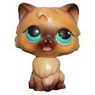 Littlest Pet Shop Magic Motion Persian (#MM3) Pet