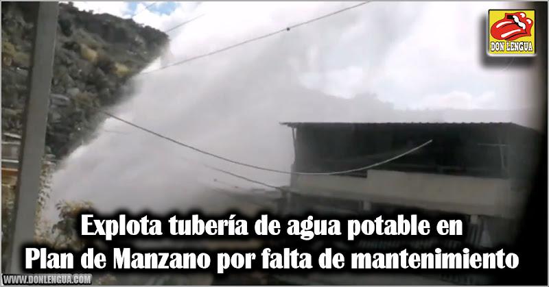 Explota tubería de agua potable en Plan de Manzano por falta de mantenimiento