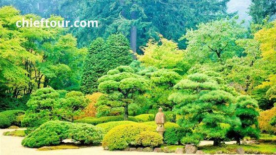 The Beautiful Views Of Kanahti Garden Soon Valley