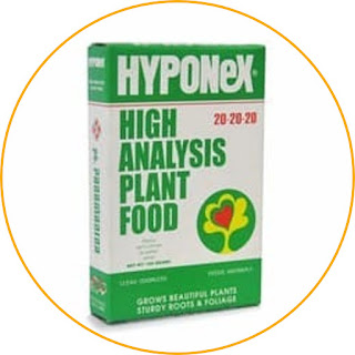Hyponex 20-20-20 Balanced nutrient content in all growth phases. This fertilizer contains a balanced NPK of 20: 20: 20, micro elements, and vitamins. Very useful for a variety of flower plants, even for orchids that require special care. You can easily dissolve this fertilizer to sprinkle it on plants or spray on the leaves. This fertilizer can be used in all growth phases, including for vegetative growth. In addition, it is also good for increasing the volume and number of leaves, and for helping to stimulate the blooming of flowers. If you are looking for a balanced NPK composition, Hyponex can be the right choice.