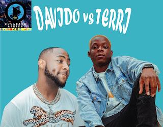 davido vs terri, davido and terri age, is davido and terri age mate, coolbaseafrica