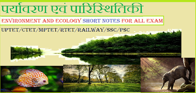 Ecology and Environment most important questions and answer