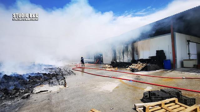 Αργολίδα: Τι αναφέρει η πυροσβεστική για την πυρκαγιά που εκδηλώθηκε σε εργοστάσιο στο Παναρίτι