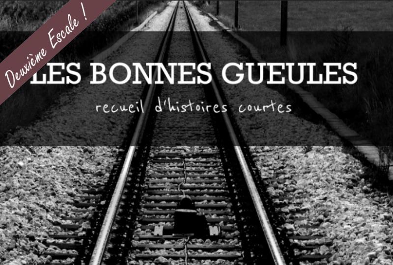 http://lamuseaplumes.blogspot.com/2017/04/les-bonnes-gueules.html