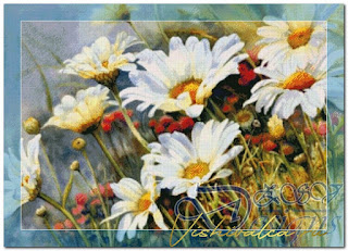 "Download cross stitch scheme 02-024 ""Daisywheels Field"" ZSV"