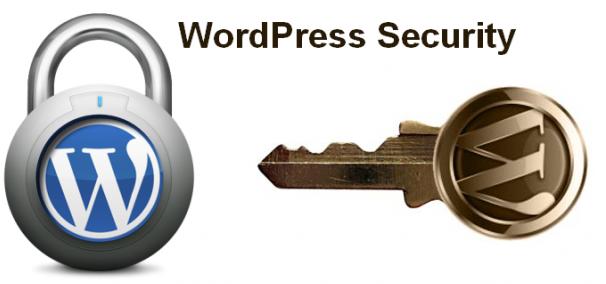teuku raja notes wordpress security