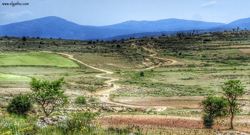 GATHOSESGAMOYA
