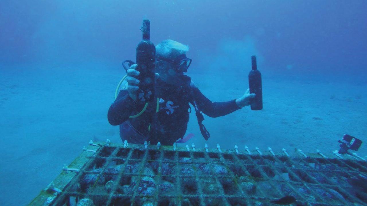 underwater-wine