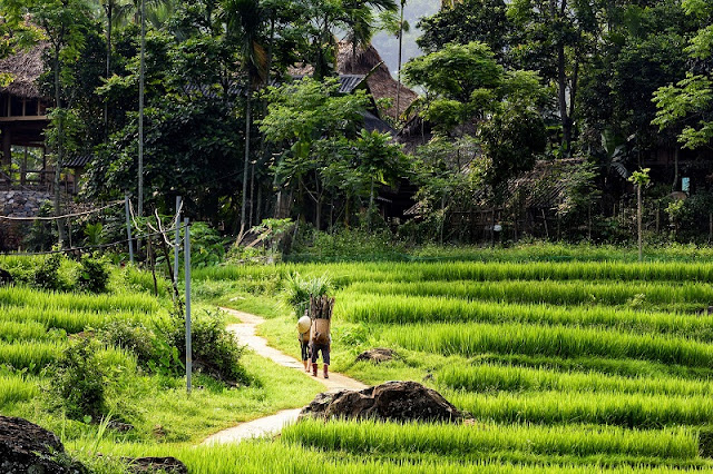 6 Destinations Where You Can Experience Northern Vietnam Off The Beaten Track 4