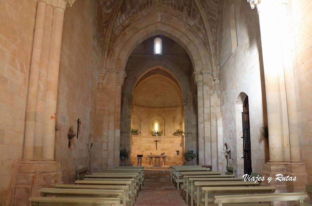 Santa Eufemia de Cozuelos, Olmos de Ojeda