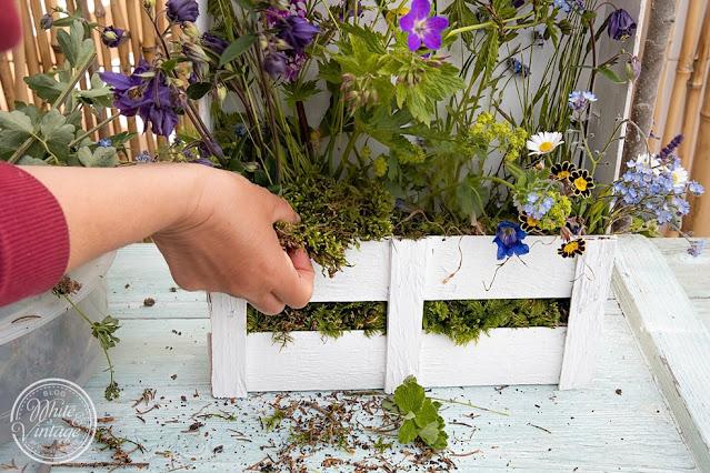 Bepflanztes Holzkistchen selber machen