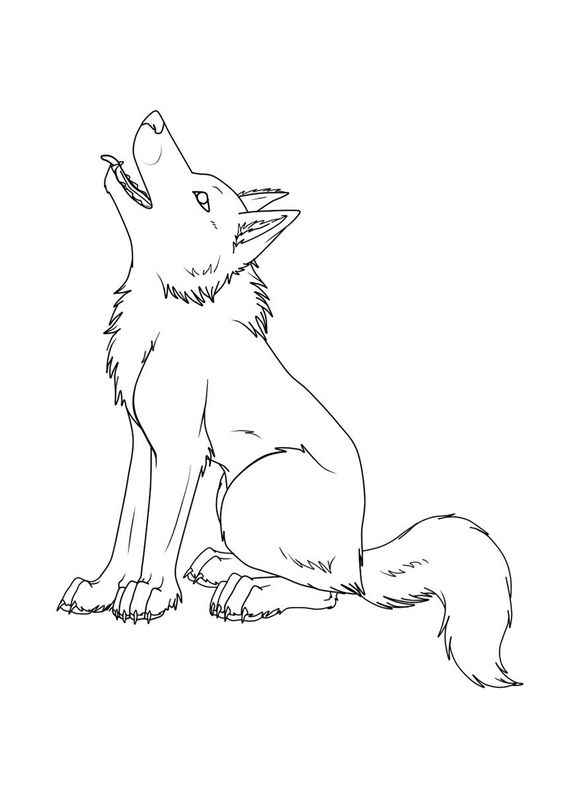 Hình tập tô màu con sói