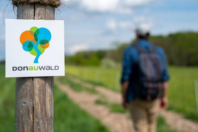 Premiumwanderweg DonAUwald  Etappe 4 von Dillingen nach Höchstädt 13