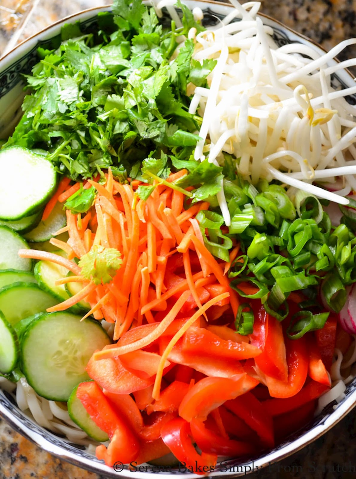 A blue and white bowl filled with somen noodles, sliced english cucumber, red bell pepper, radish, shredded carrots, mung bean sprouts, cilantro leaves, and sliced scallions.