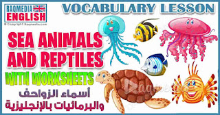 sea-animals-reptiles-vocabulary-esl-picture-dictionary-worksheets-for-kids