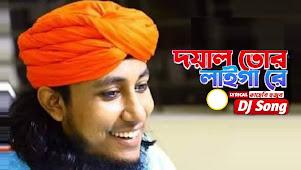 Doyal Tor Laiga Re Lyrics (ও মুর্শিদ ও) Taheri Hujur | Dj Song