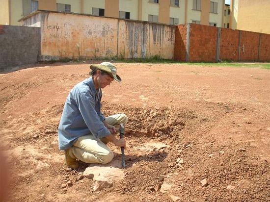 Encontrados Fósseis de aves da época dos dinossauros em terreno de SP - Img 2