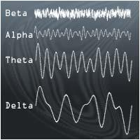 Brain waves: Beta, Alpha, Theta and Delta.