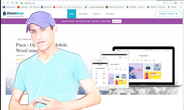 الحصول على تصاميم لمتجرك الخاص thembay وتمتح بأرباحك-WordPress Theme