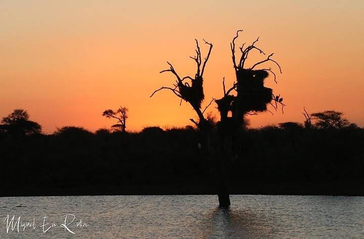 Sunset-Dam-Kruger