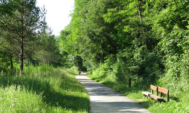 Camí de Sant Joan de les Abadesses