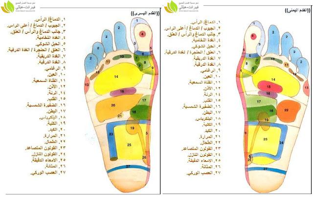 خريطة القدمين