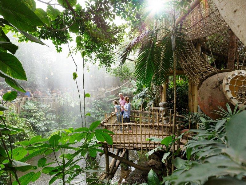 Choosing the Best Center Parcs Holiday in the Netherlands - Het Heijderbos Jungle