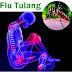 Obat Herbal Flu Tulang di Apotik
