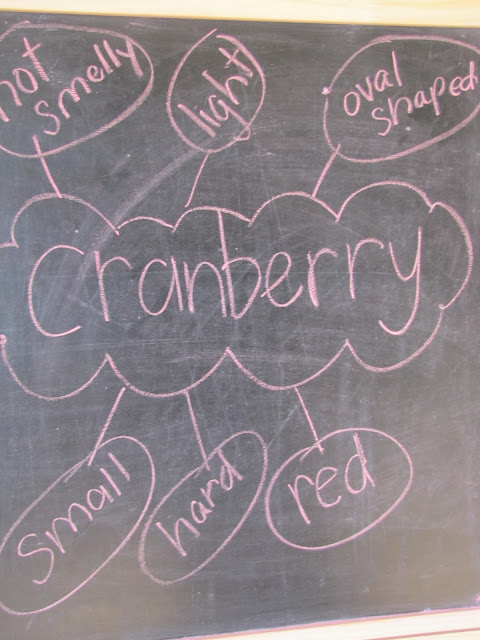 Cranberry Thanksgiving Go along activities