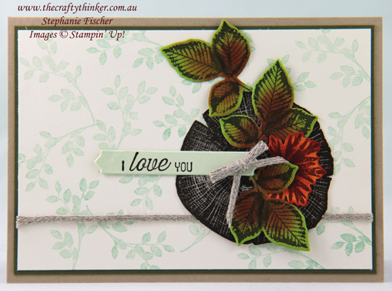#thecraftythinker #stampinup #cardmaking #valentinecard #rootedinnature #sdbh , Valentine Card, SDBH, Rooted In Nature, Masculine Card, Stampin' Up Demonstrator, Stephanie Fischer, Sydney NSW