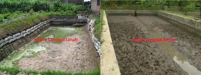 membuat kolam tanah