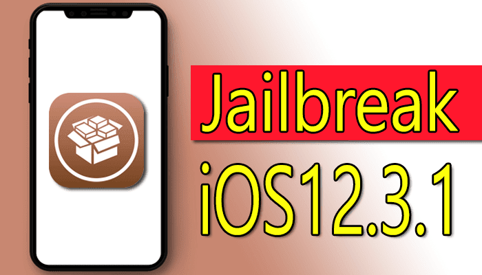 https://www.arbandr.com/2019/06/jailbreak-ios12.3.1-tfp0-exploit-bug..html