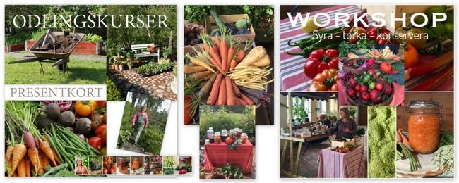 Odlingskurser och workshops i Tyras potager