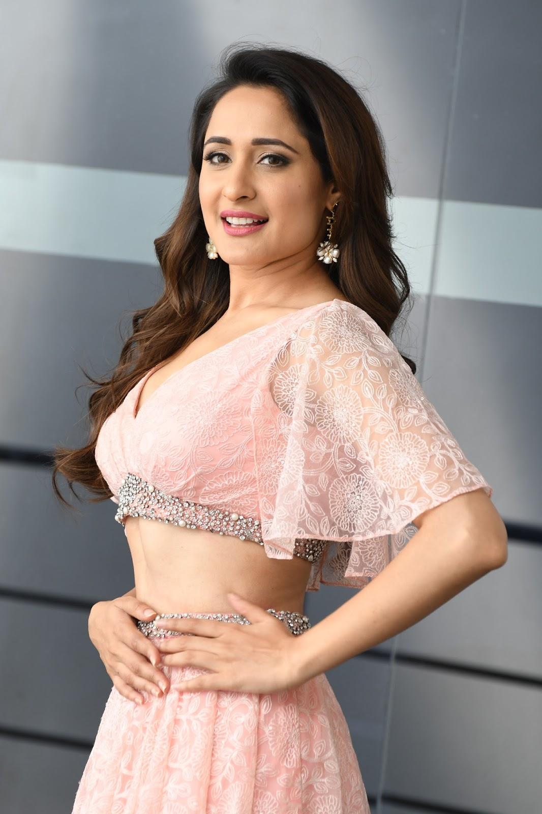 Pragya Jaiswal HD Stills At Om Namo Venkatesaya Movie Press Meet
