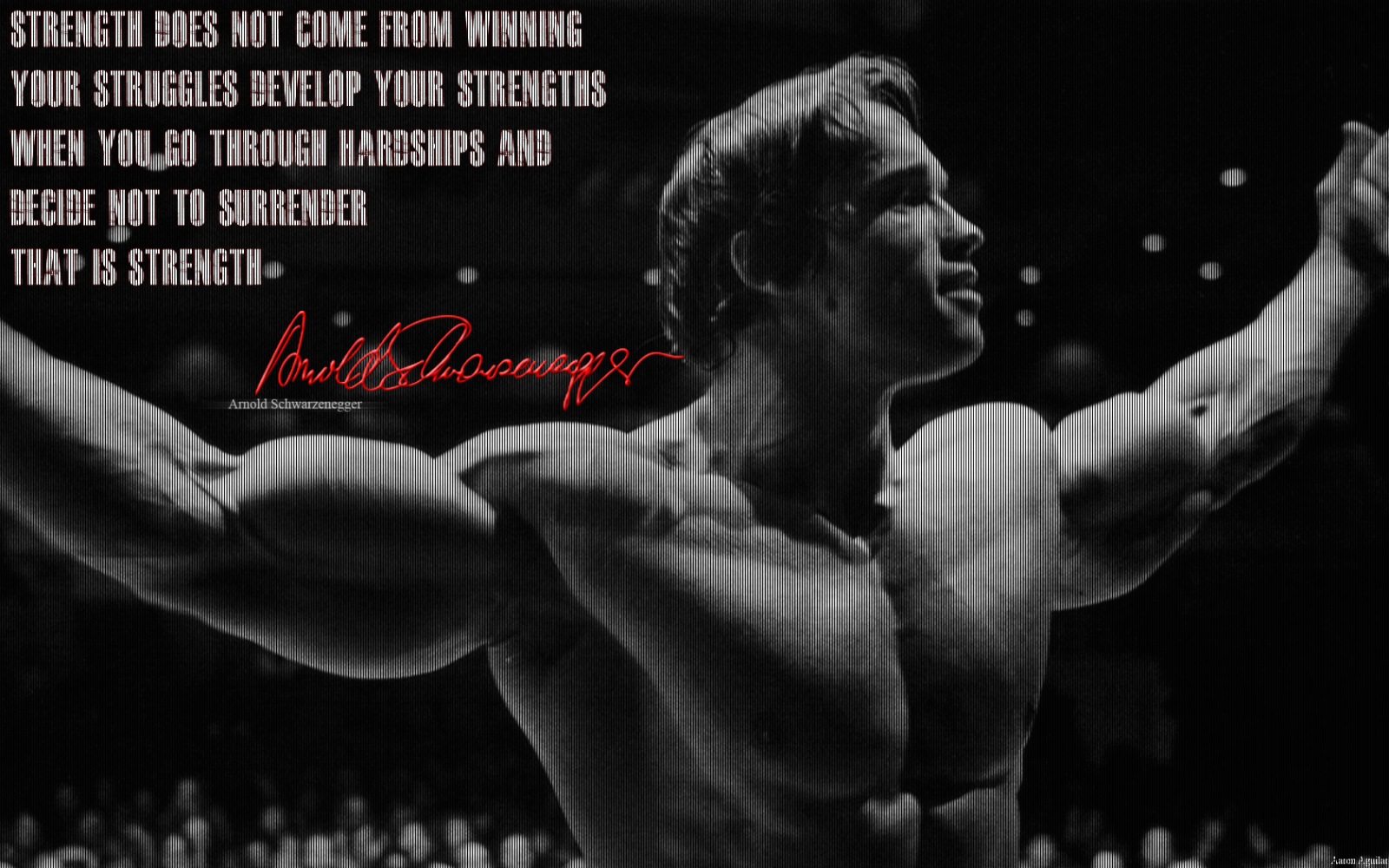 Top Inspirational Strenght Quotes Hd Wallpapers: Motivational Bodybuilding