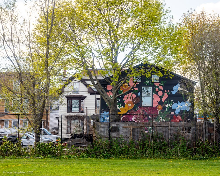 Portland, Maine USA May 2020 photo by Corey Templeton. The mural by Tessa O'Brien on the back side of the West End restaurant Chaval.