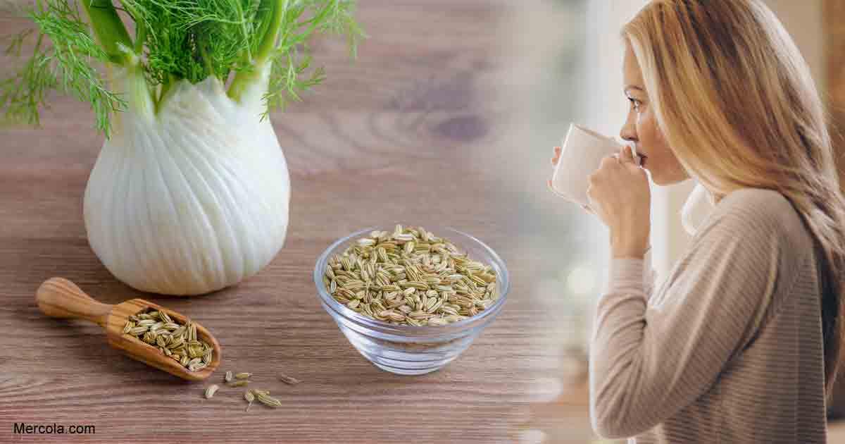Consumir Sementes de Erva-Doce [Funcho] Durante a Gravidez - Benefícios, Efeitos Colaterais e Muito Mais