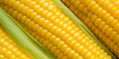 77 Powerful Benefits of corn for the health of your body